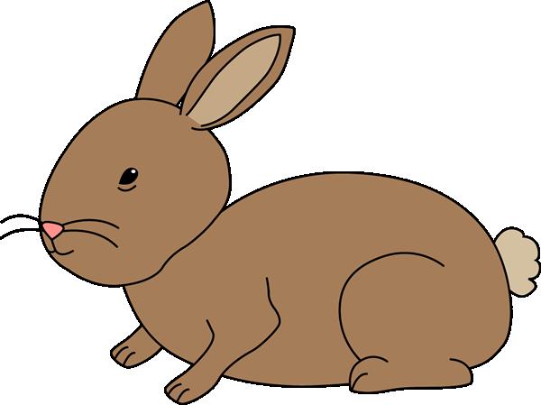 Netherland dwarf rabbit clip. Bunny clipart transparent background