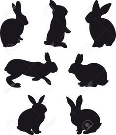Bunny clipart vector. Pin by digital labz