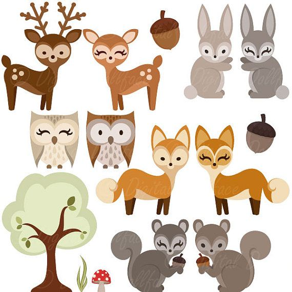 Woodland forest animal owl. Animals clipart deer
