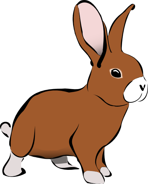 Clipart rabbit. Panda free images rabbitclipart