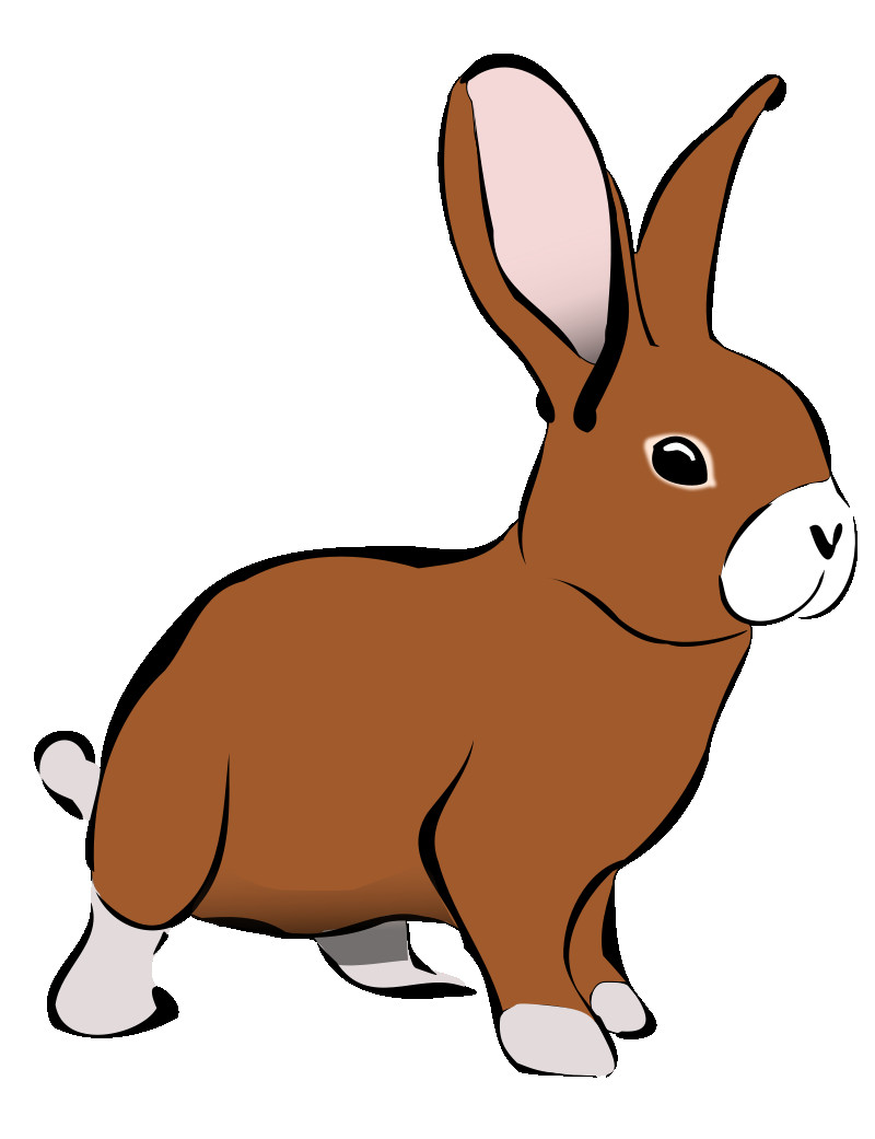 Bunny clipart clip art. Free thatswhatsup rabbit images