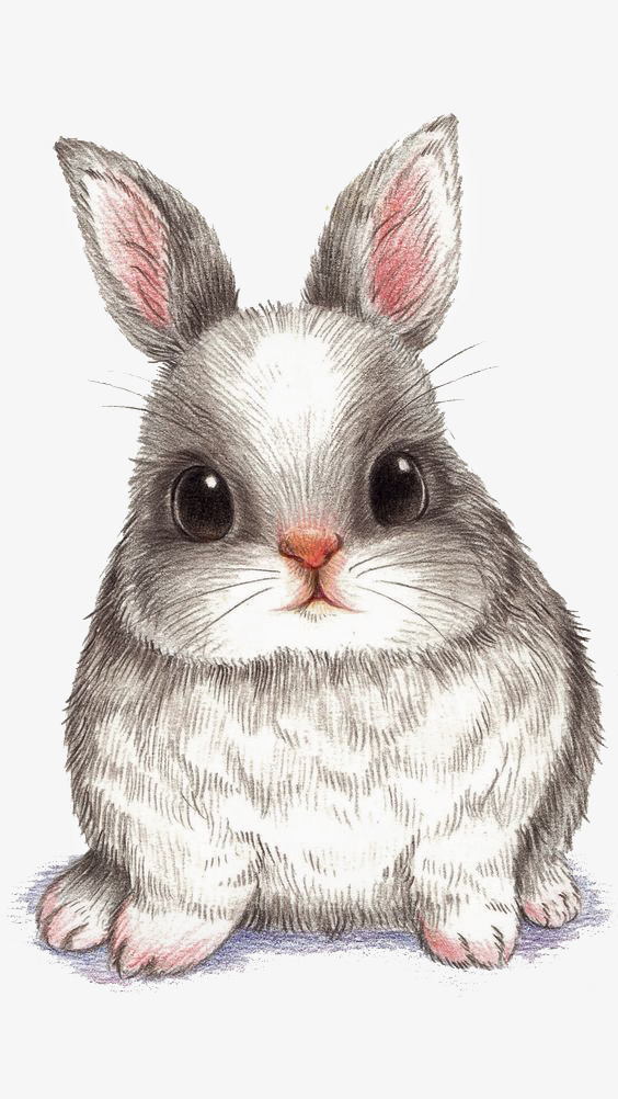 Cartoon rabbit hand painted. Bunny clipart colored