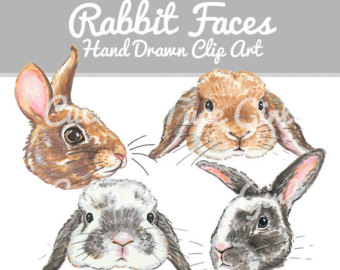 Bunny etsy rabbit clip. Bunnies clipart mini lop