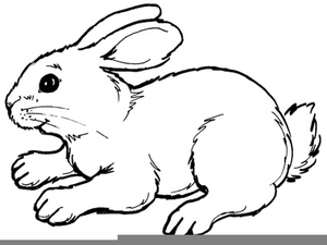 Rabbit free images at. Bunny clipart running