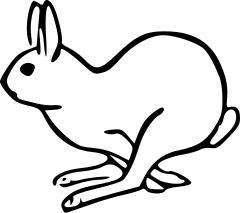 bunny clipart running