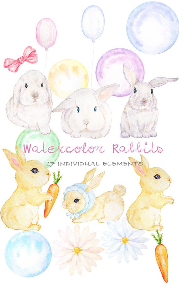Bunny clipart shabby chic. Cute easter digital watercolor