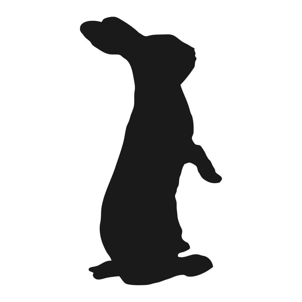 Shadow rabbit pencil and. Bunny clipart vector