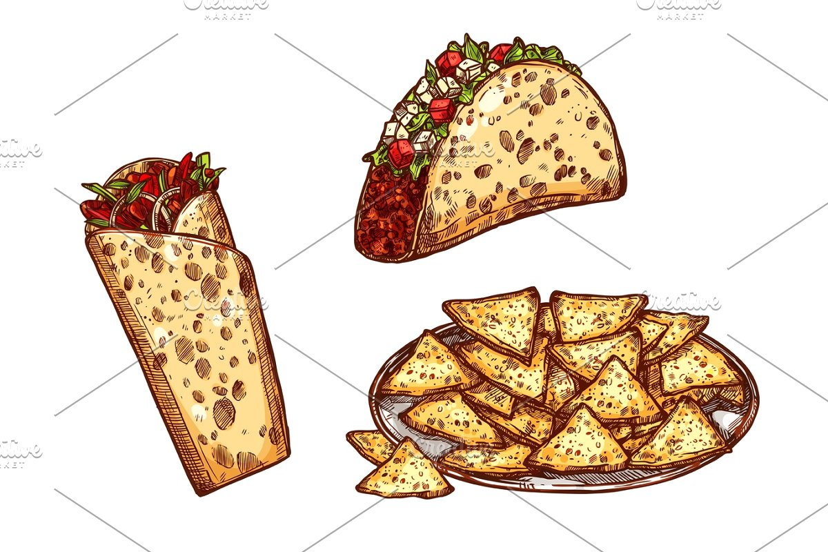 Sketch icons fast food. Burrito clipart vector