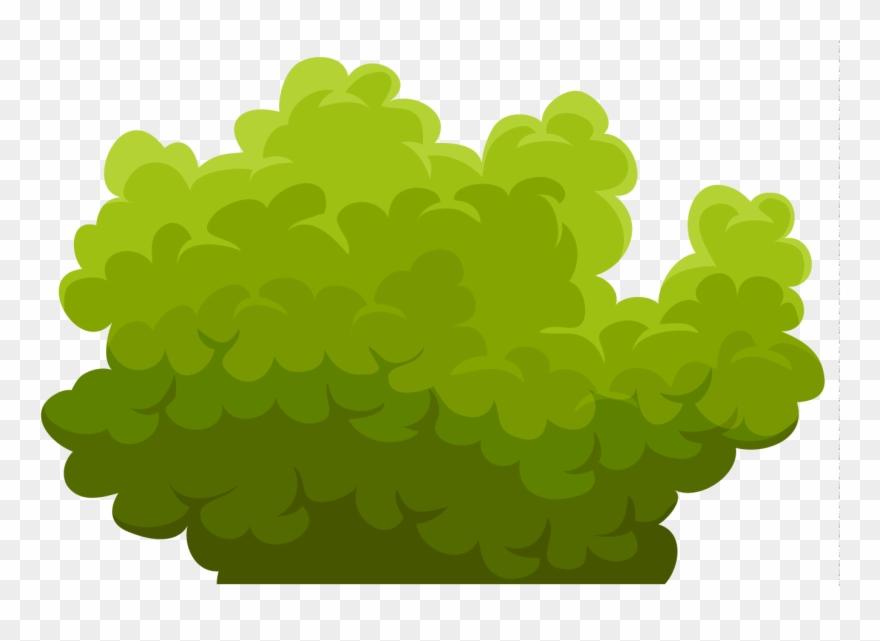 Bush clipart. Green cliparts png clip