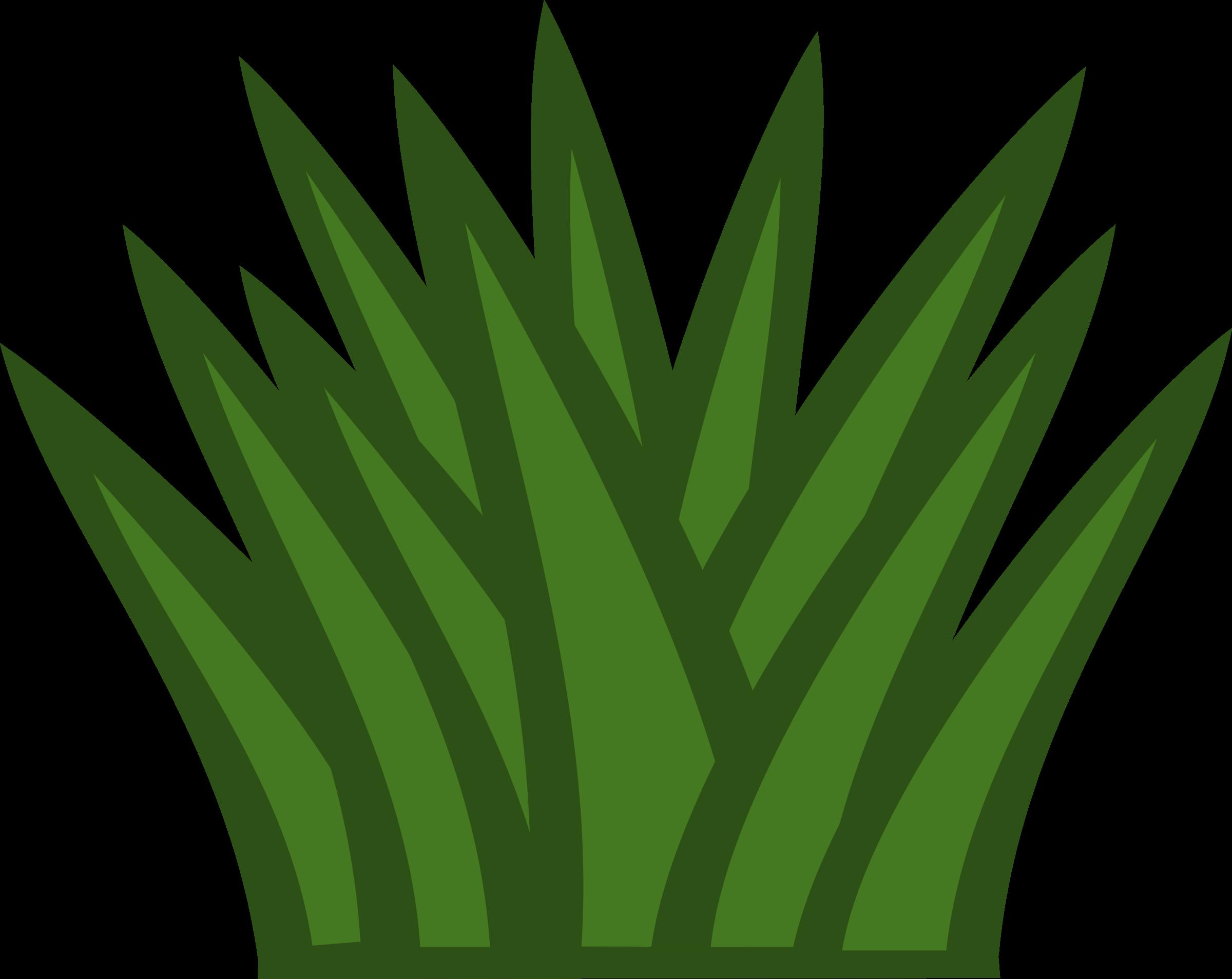 Clipart grass shrub. Cactus big image png