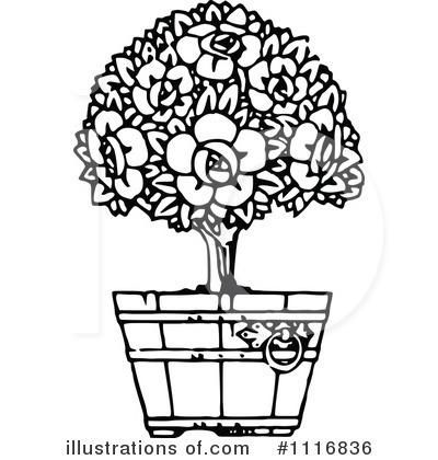 Plant illustration by prawny. Bush clipart black and white