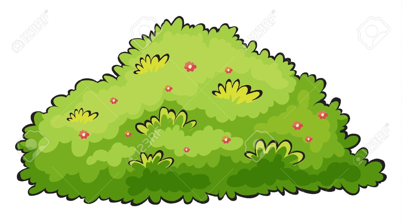 Bush clipart cartoon. Illustration of a green