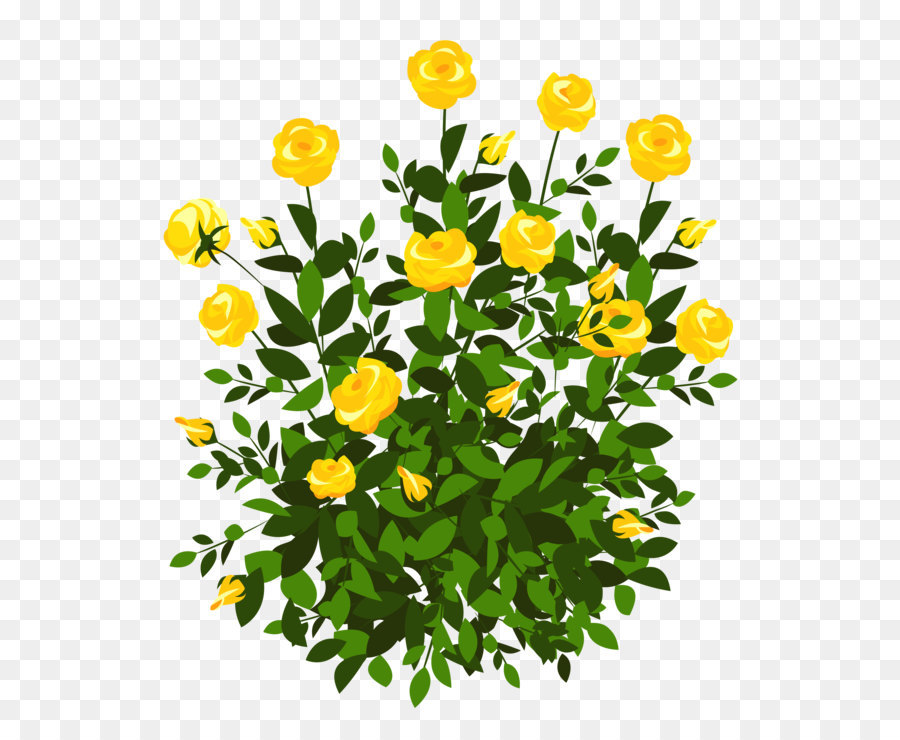 Bush clipart clip art. Rose shrub flower yellow