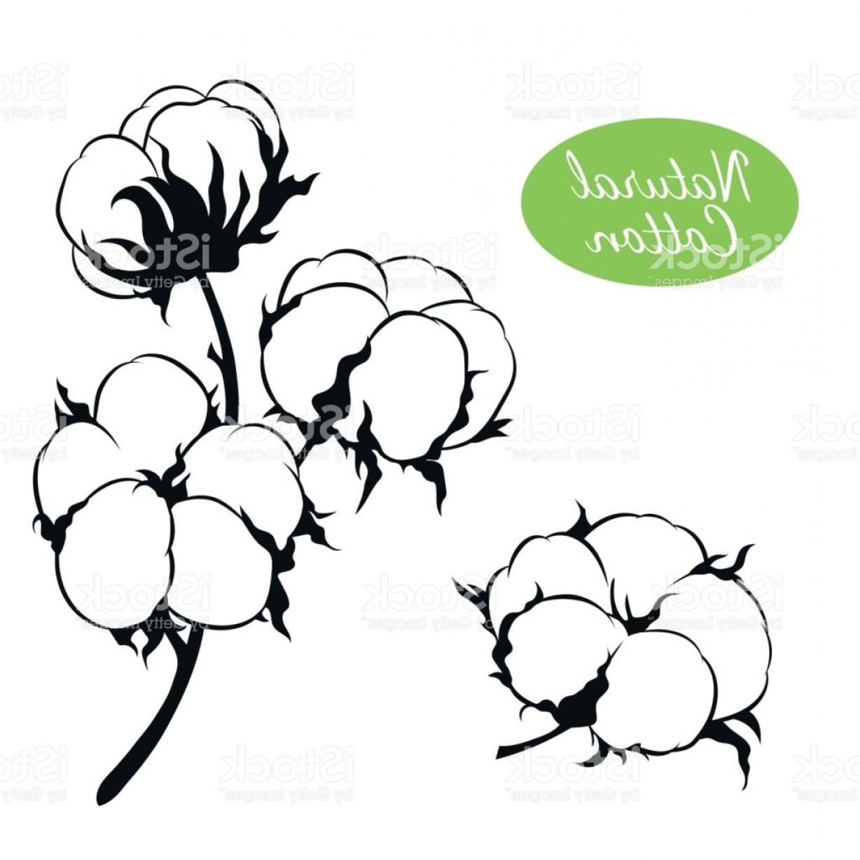 Free download clip art. Cotton clipart bush