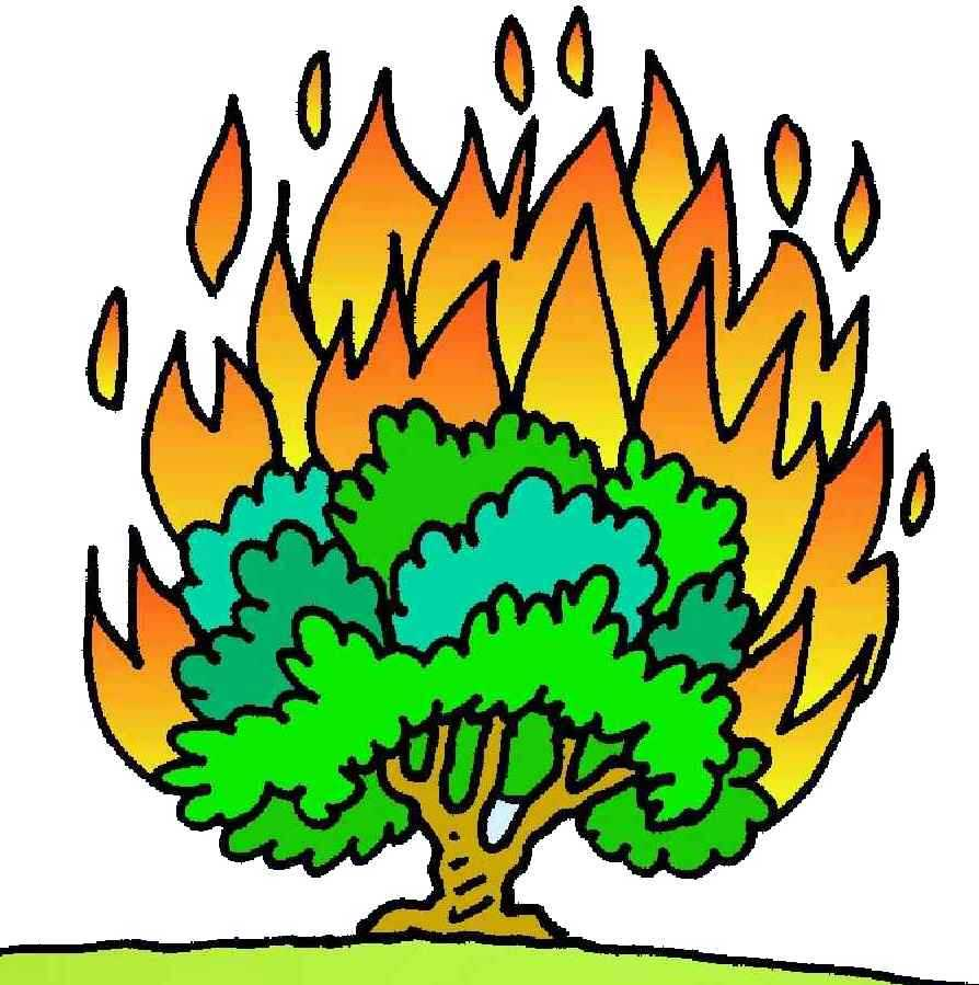 Burning bush at getdrawings. Bushes clipart drawing