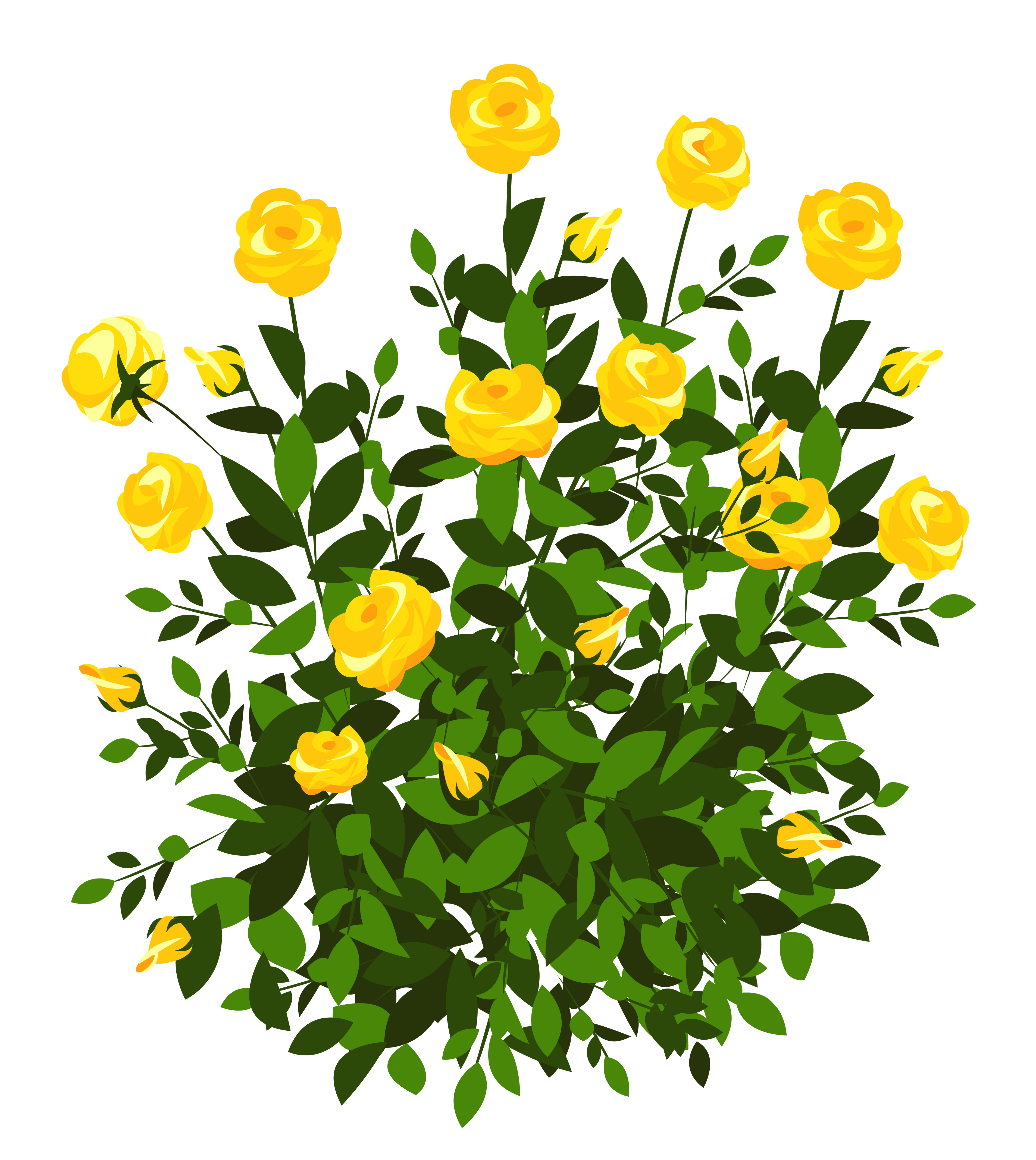 Yellow rose picture gallery. Clipart png bush