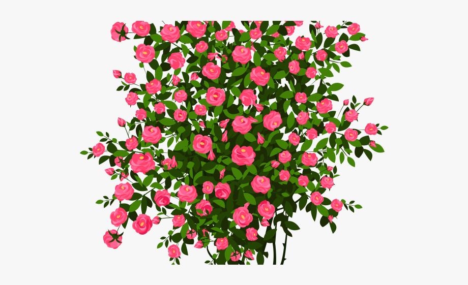 Bush clipart flower. Drawn rose animated clip