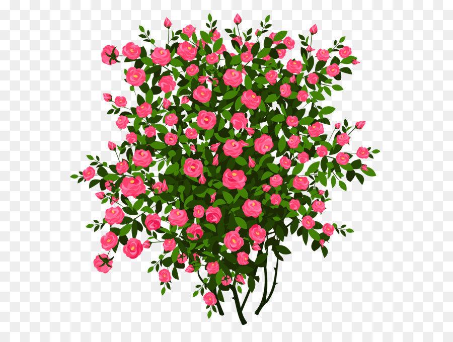 Bush clipart flower. Rose shrub clip art