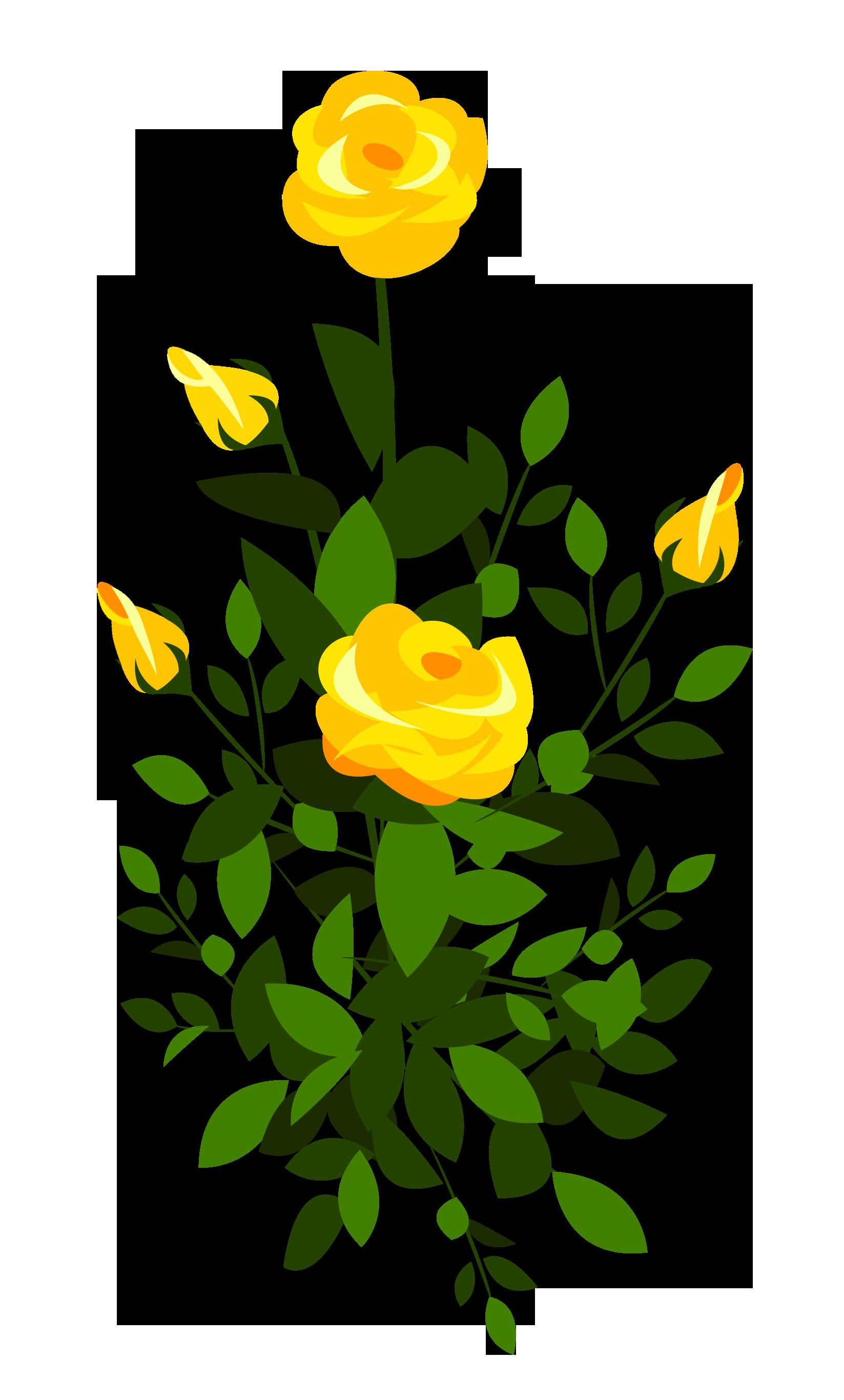 Pin by marija on. Bush clipart flower