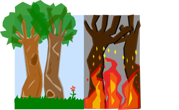 Bush clipart forest. Fires clip art at