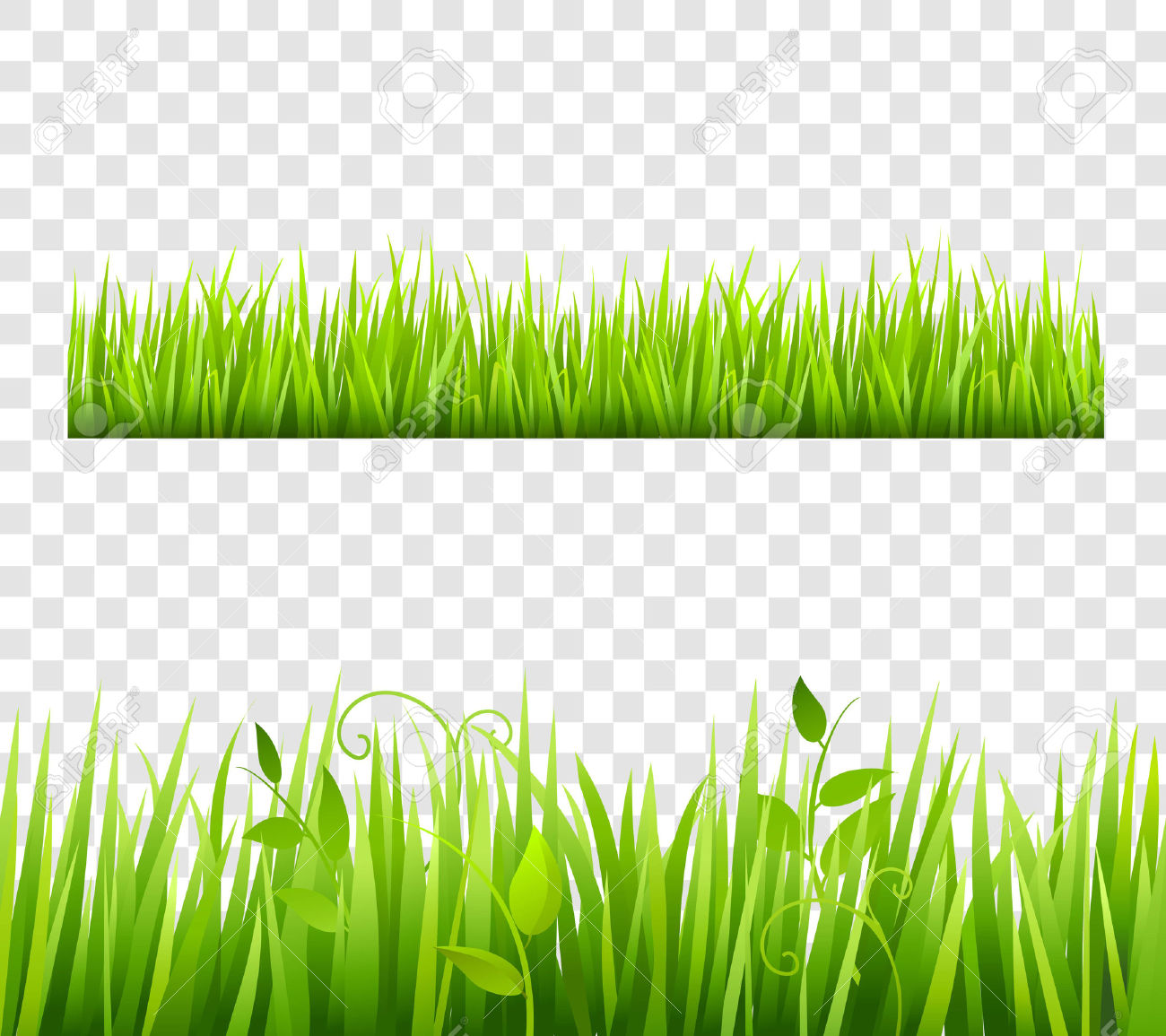 Sea grass free pnglogocoloring. Bush clipart forest