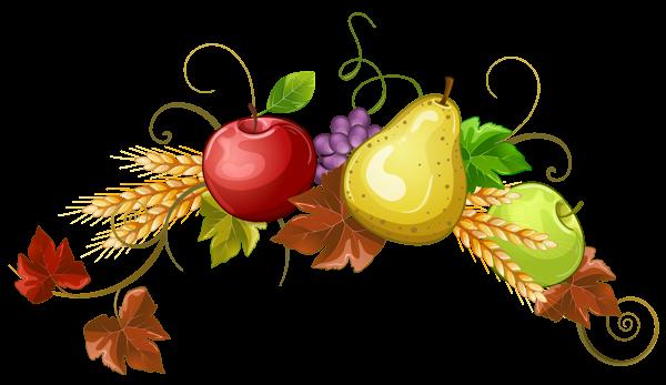 Bush clipart fruit. Autumn fruits decoration png