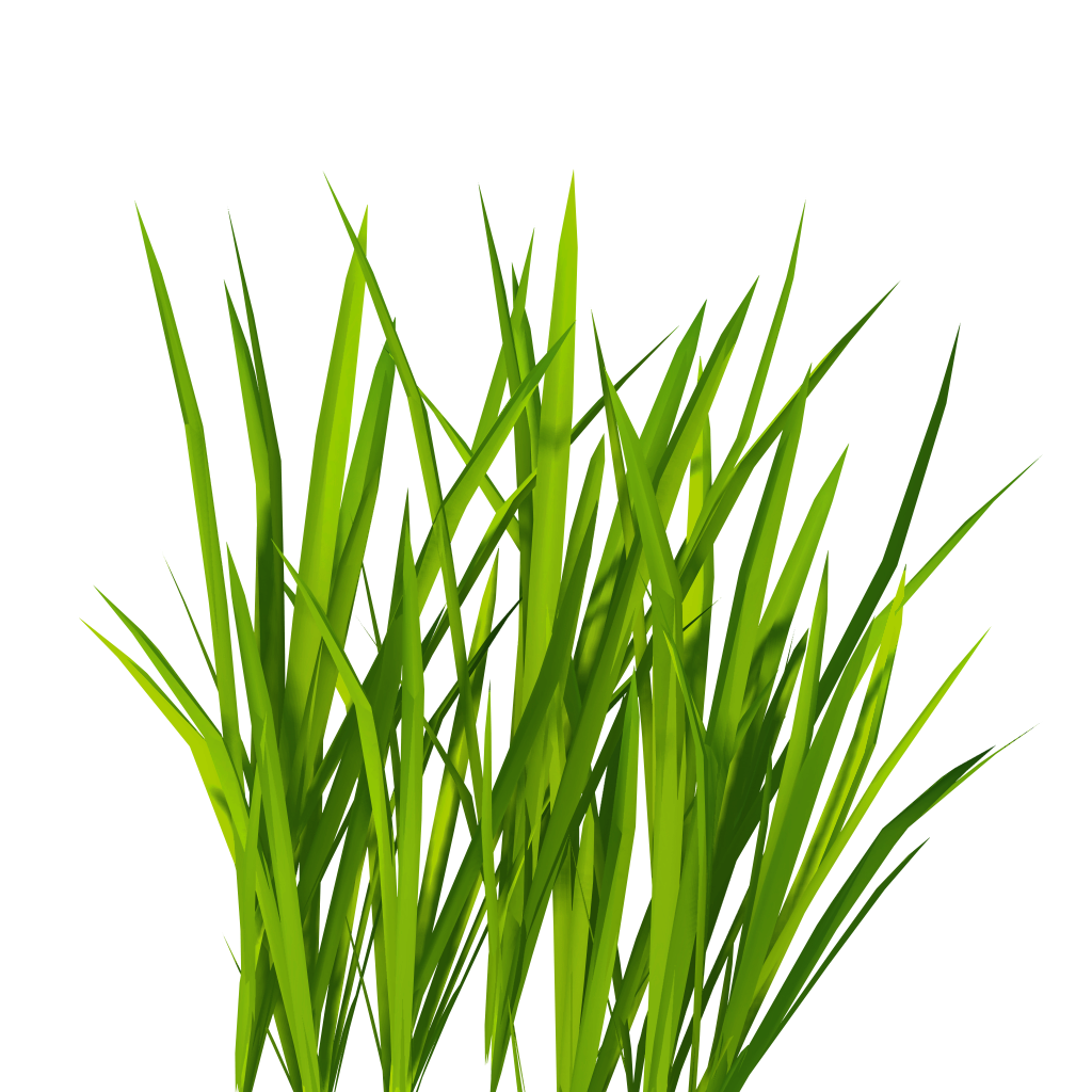 Land clipart carpet grass. Png images pictures image