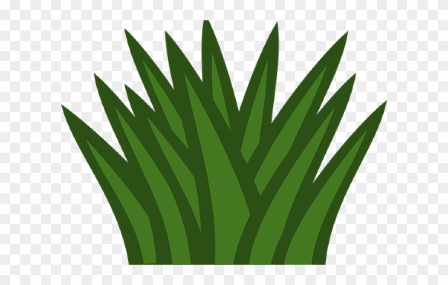 Clipart grass shrub. Dry desert bushes png