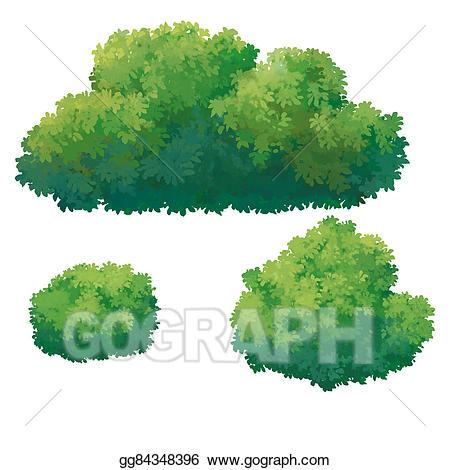 Drawing gg gograph . Bush clipart green bush