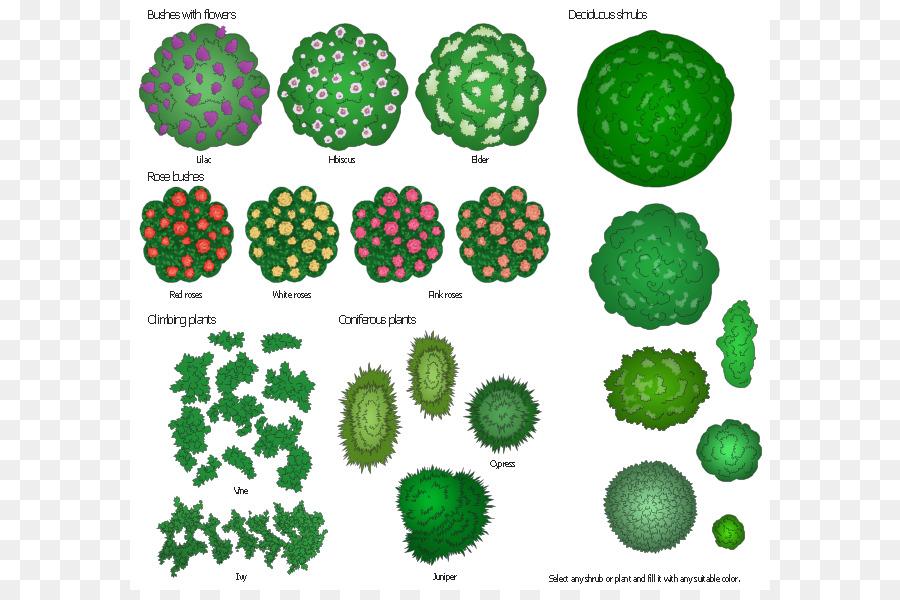 Bush clipart landscape. Design architecture shrub bushes