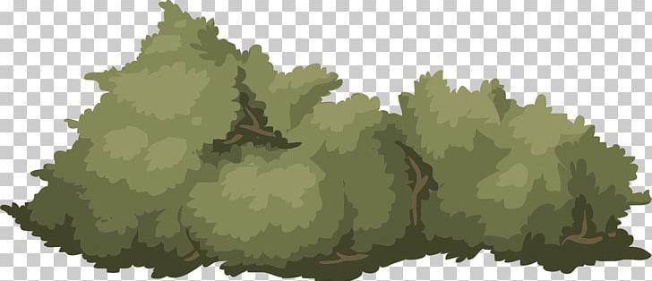 Green shrub png clip. Bush clipart landscape