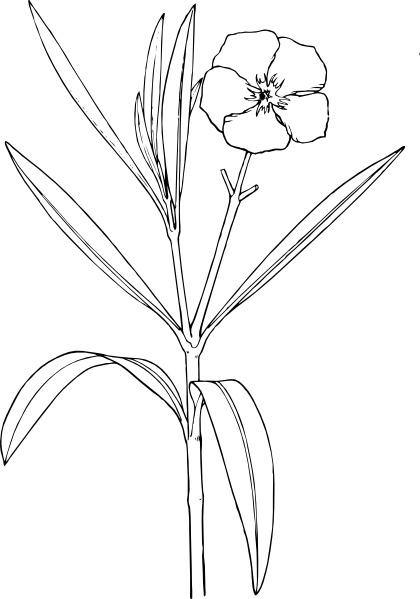 Bushes clipart svg. Flower bush clip art
