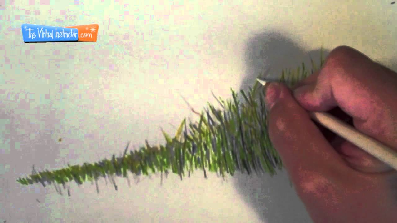 How to draw grass. Bush clipart paint