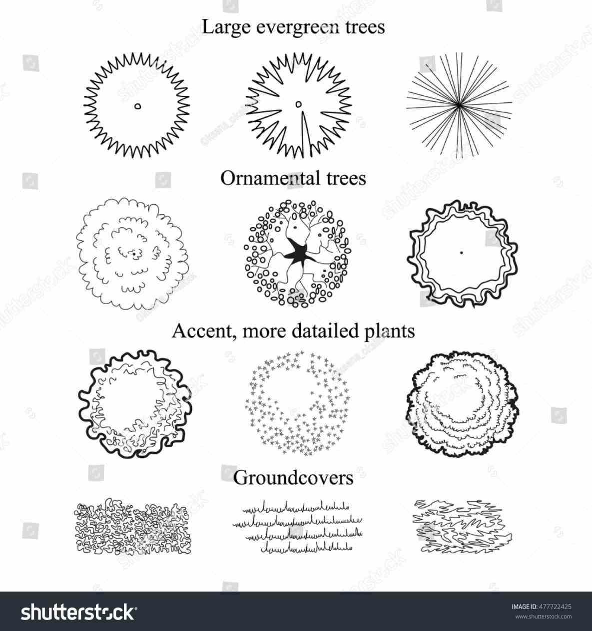 Bush clipart plan. Tree landscape design abstract