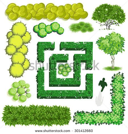 Trees and item top. Bush clipart plan