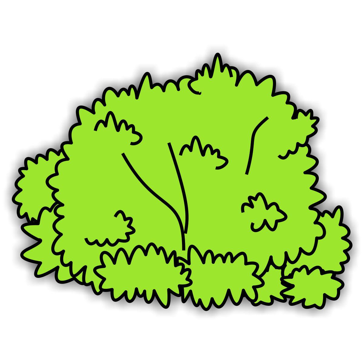 bushes clipart plant