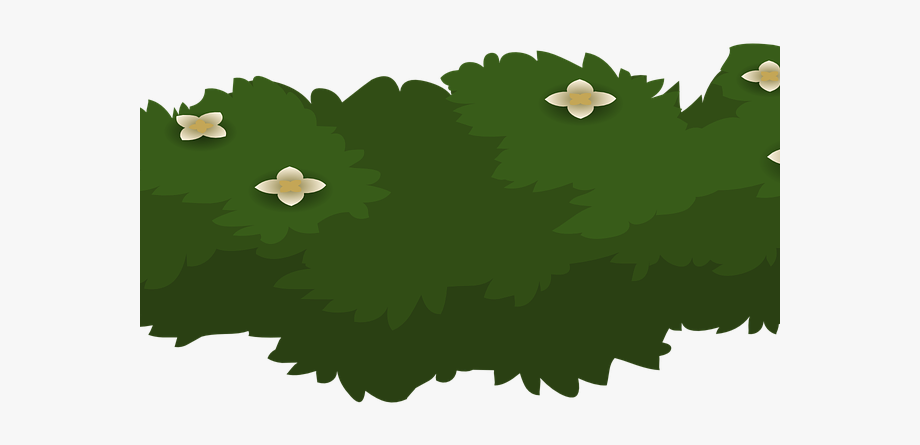 Bush clipart plant. Shrub bushes garden cartoon
