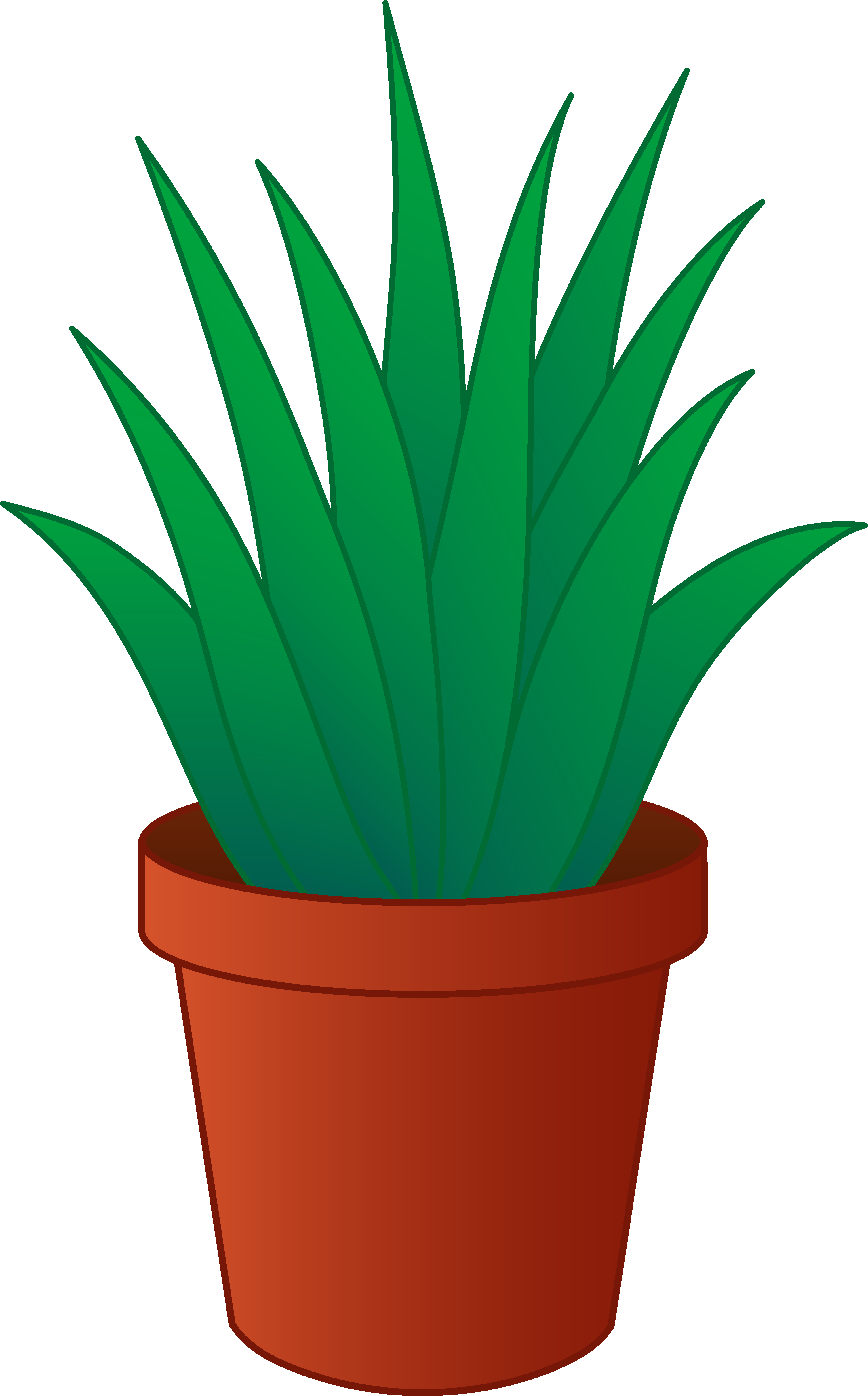 . Plants clipart potted plant