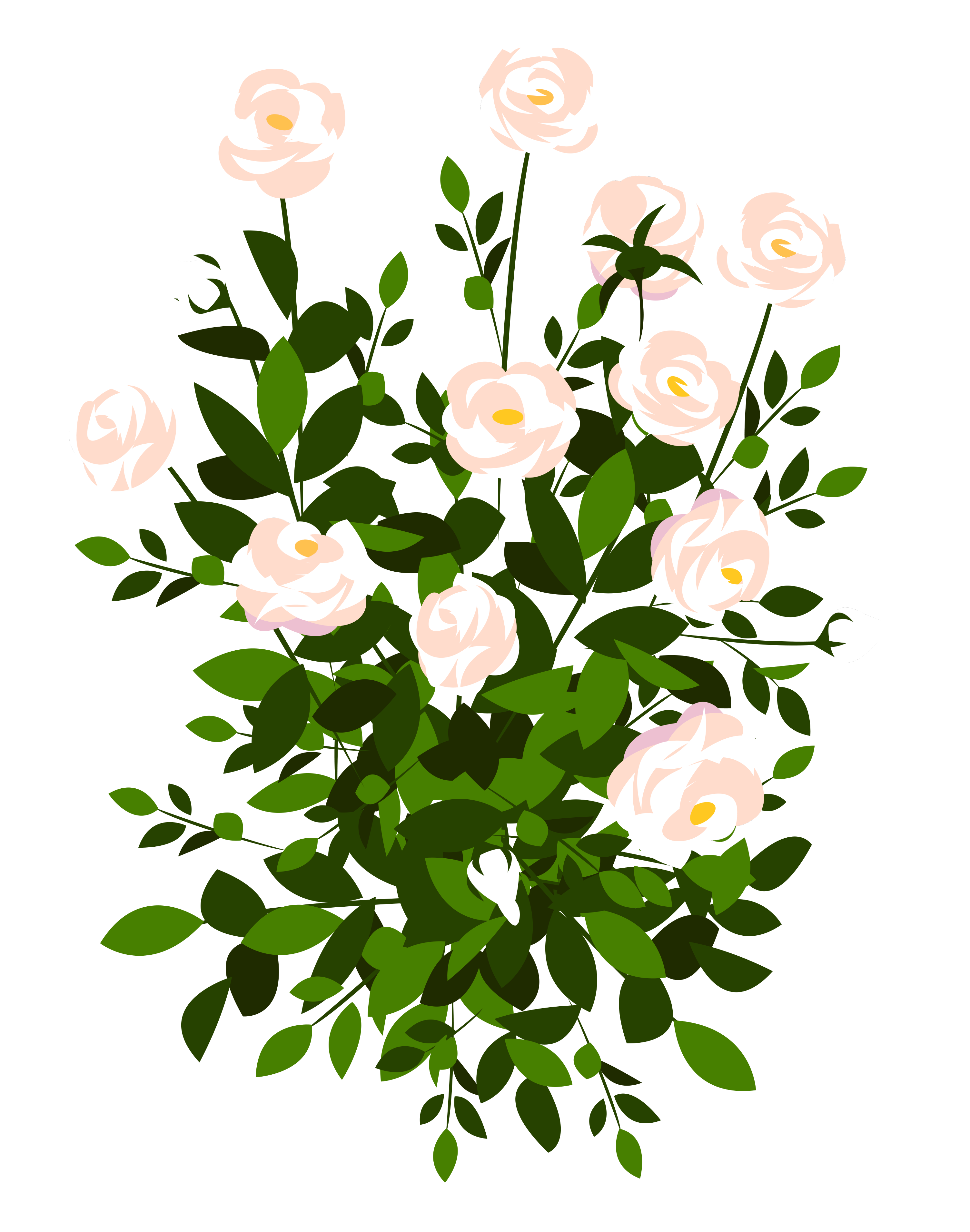 Clipart rose rose bush. Whte png picture gallery