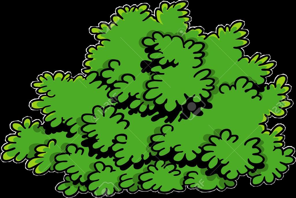 Freetoedit cartoon transparent . Bush clipart shrub