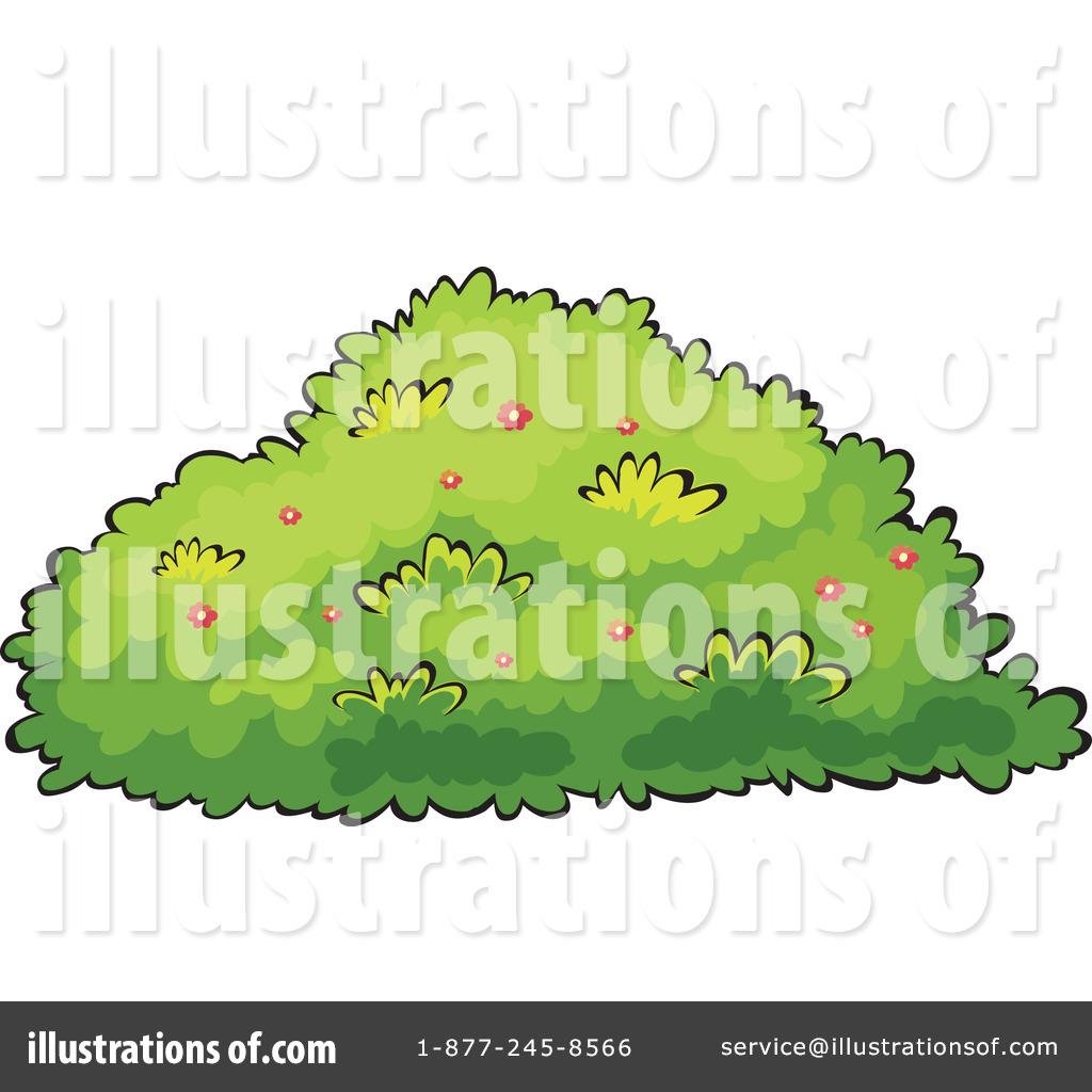 Bushes illustration by graphics. Bush clipart shrub