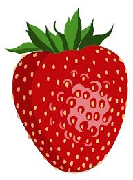 Bush clipart strawberry. Image result for egypt