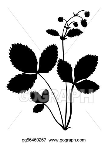 Vector silhouette of the. Bush clipart strawberry