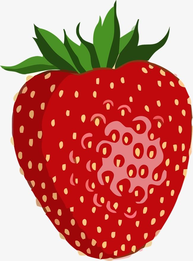 Strawberries clipart bush. Red fruit strawberry spring