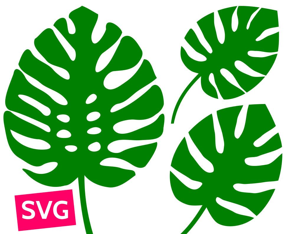 Cuttable and printable monstera. Hawaii clipart leaf