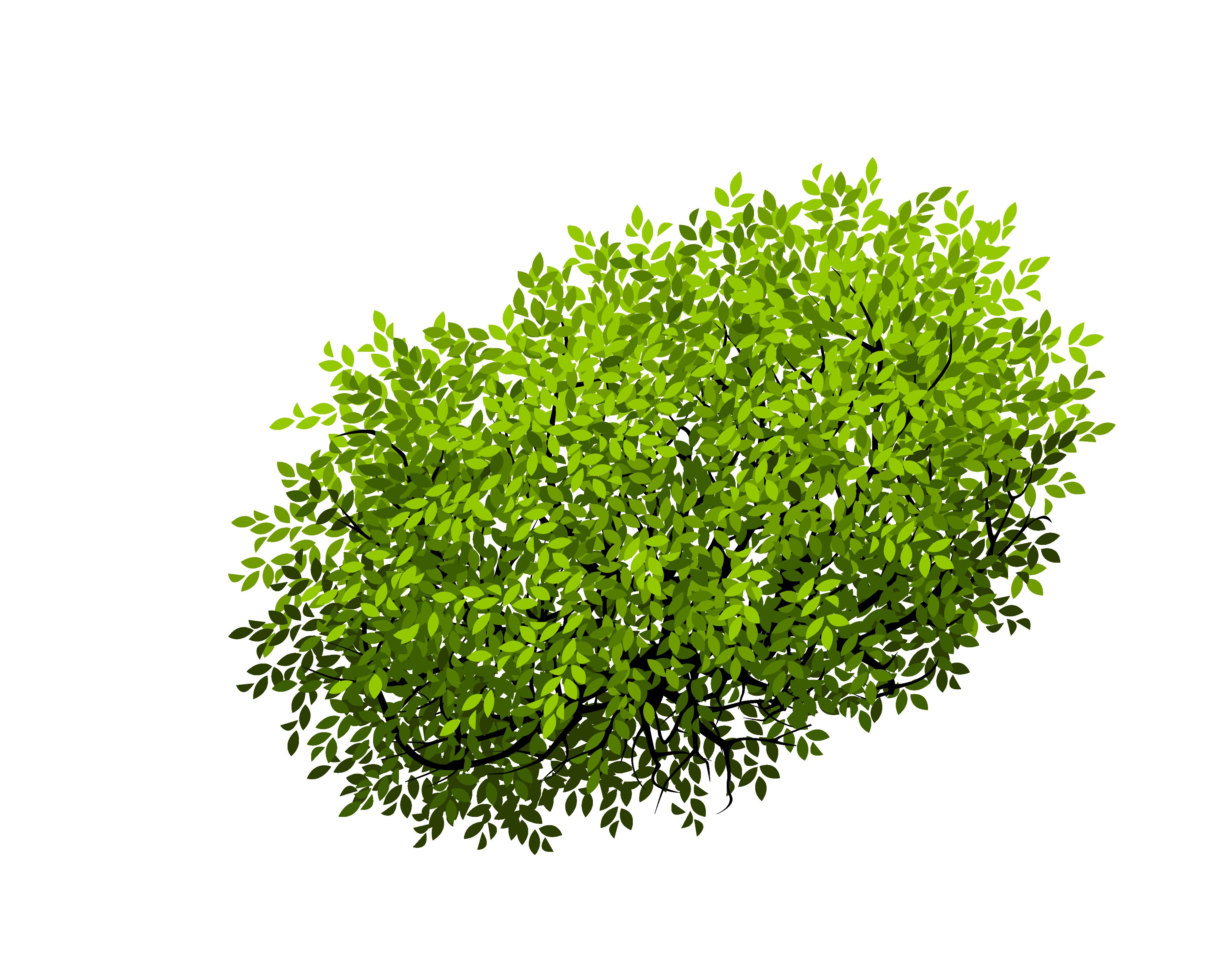 Bush clipart vector. Euclidean shrub tree png