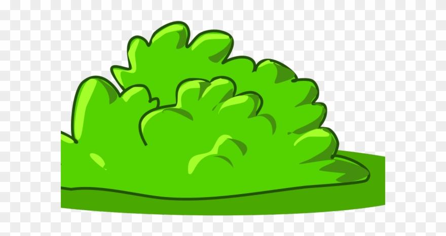 Grass clipart shrub. Bushes svg cartoon png
