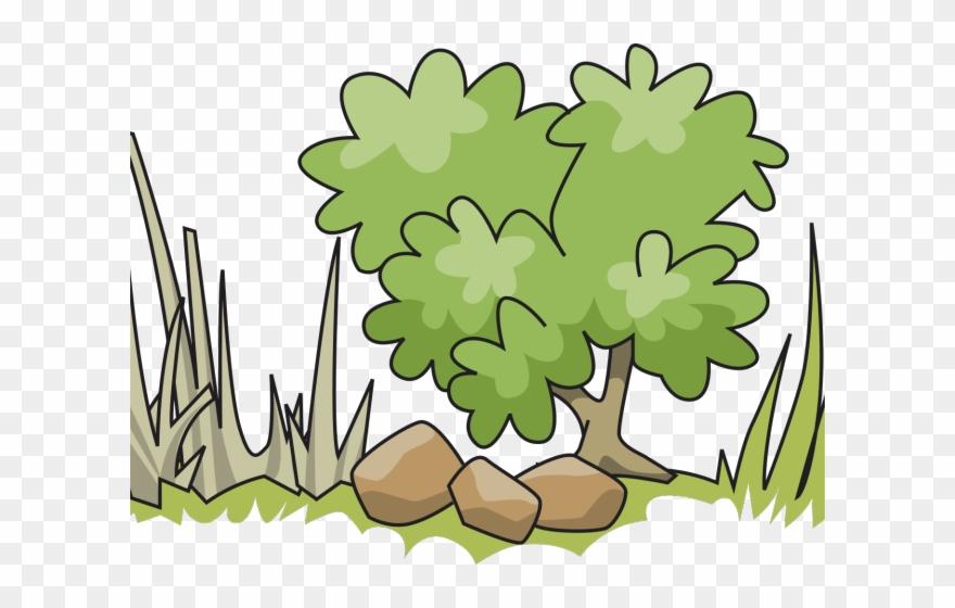 Shrub bushes tall tree. Bush clipart shrubbery