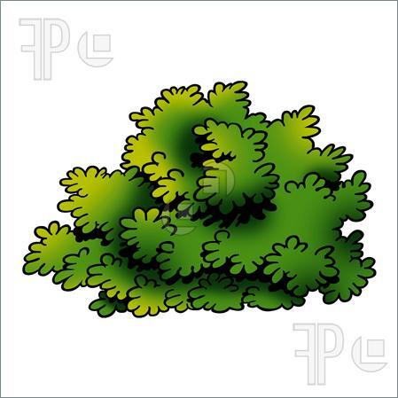Cliparts shrub. Bushes clipart animated
