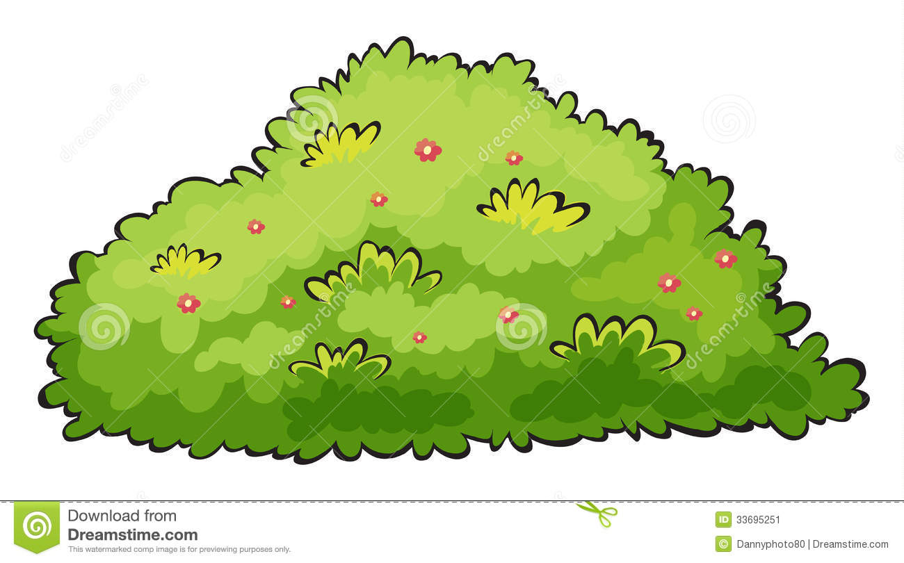 collection of berry. Berries clipart cartoon
